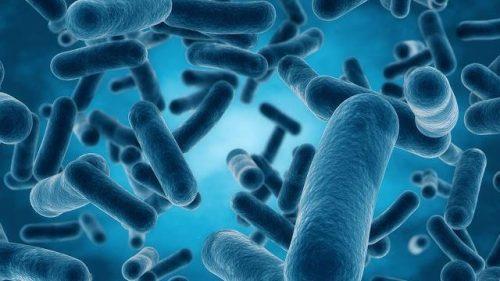 """صورة التحذير من انتشار """"بكتيريا خارقة"""" تغزو العالم عبر مترو الأنفاق"""