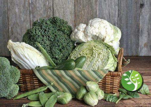Photo of Compuesto en col rizada, repollo y brócoli protege contra el cáncer de intestino