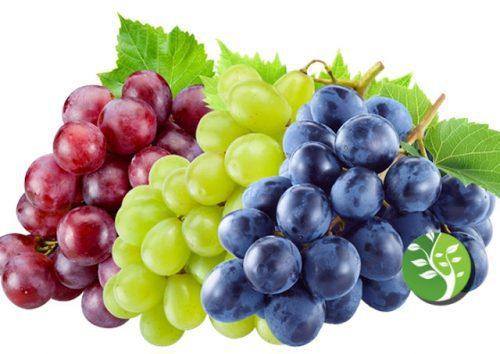Photo of Compuestos naturales en uvas que se encuentran para disminuir la inflamación en el cerebro, aliviar los síntomas de depresión