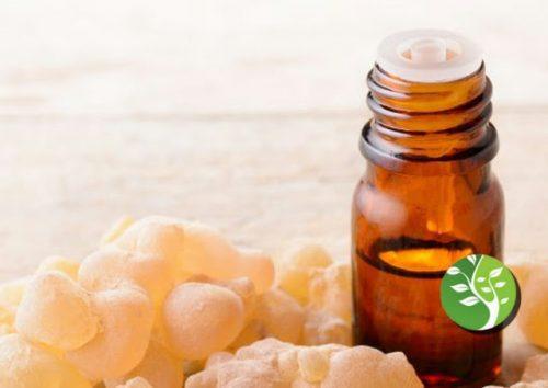Photo of El aceite esencial de incienso es más efectivo para destruir células cancerosas que la quimioterapia.